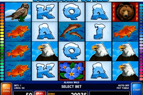 alaska wild casino technology pacanele