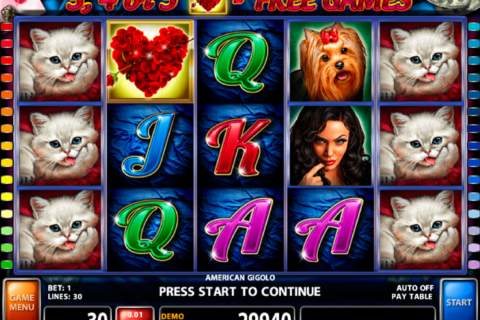 american gigolo casino technology pacanele