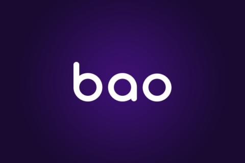 Baocasino Cazino Recenzie