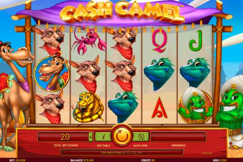 cash camel isoftbet pacanele