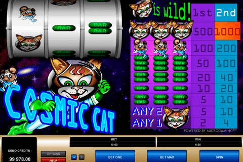 cosmic cat microgaming pacanele