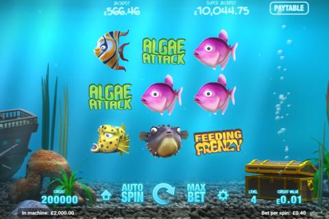 fish tank magnet gaming pacanele