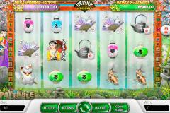 geisha wonders netent pacanele