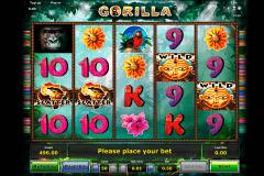 gorilla novomatic pacanele