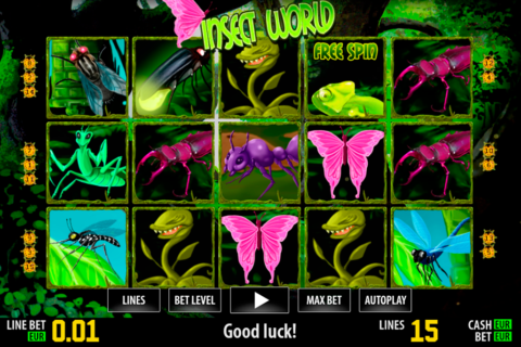 insect world hd world match pacanele