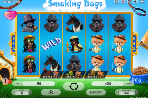 smoking dogs fugaso pacanele