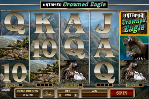 untamed crowned eagle microgaming pacanele
