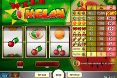 wild melon playn go pacanele