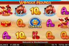 wonder hounds netgen gaming pacanele